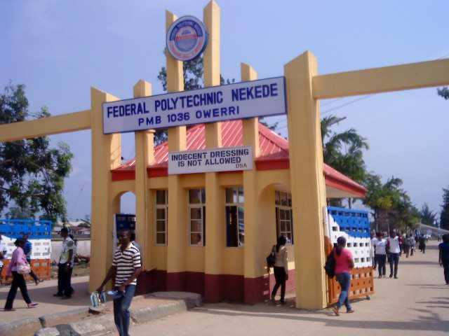 Image result for Fed Poly Nekede