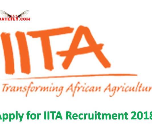 IITA Recruitment