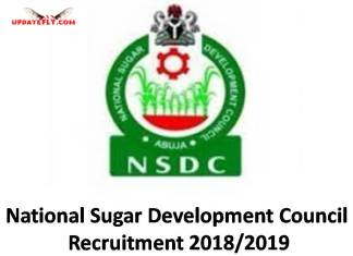 NSDC Recruitment