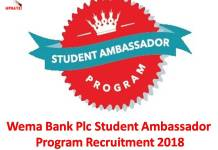 Wema Bank Plc Student Ambassador Program Recruitment 2018