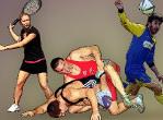 ip sports brochure dossier