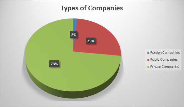 types of companies - figure 4