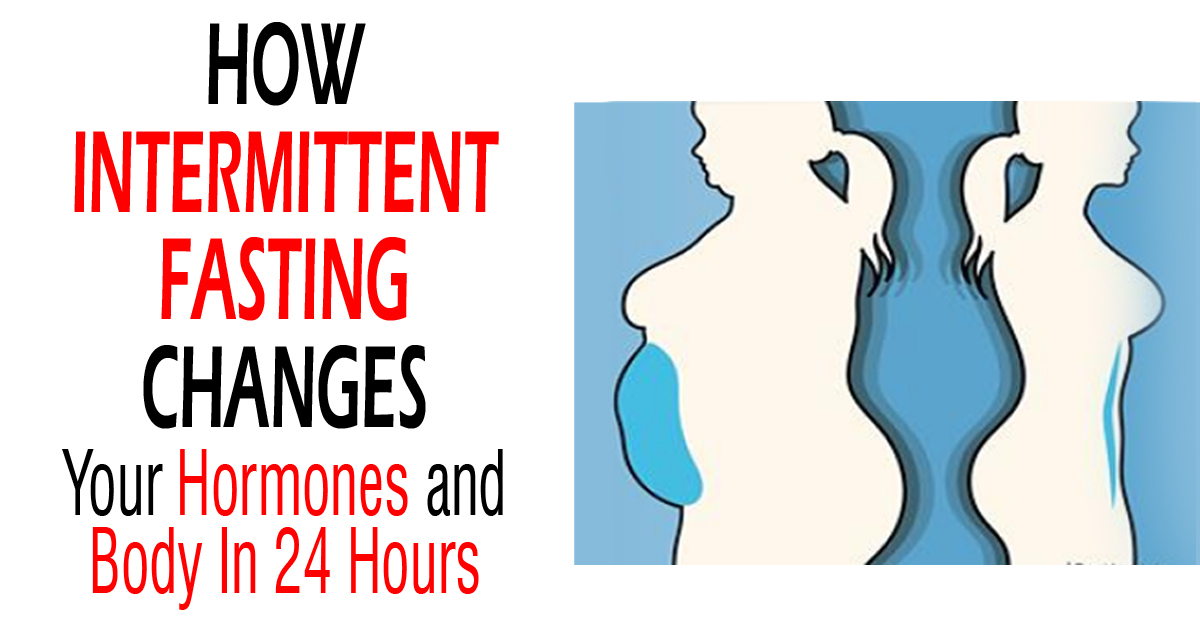 How Intermittent Changes Your Hormones And Body In 24 Hours