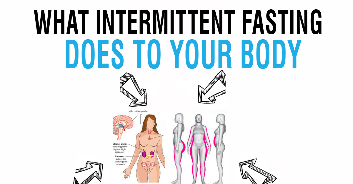 What Intermittent Fasting Does To Your Body