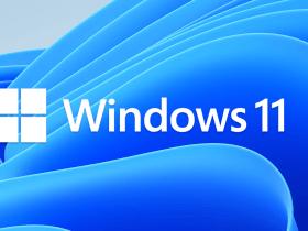 Latest Windows 11 Home needs an Microsoftaccount, but Pro ?