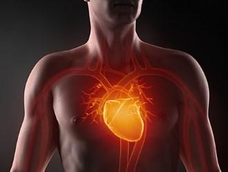 Dienos (Holterio) EKG ir kraujo spaudimo stebėjimas - Endokarditas