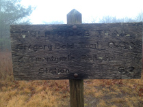 gregory-bald-sign-3