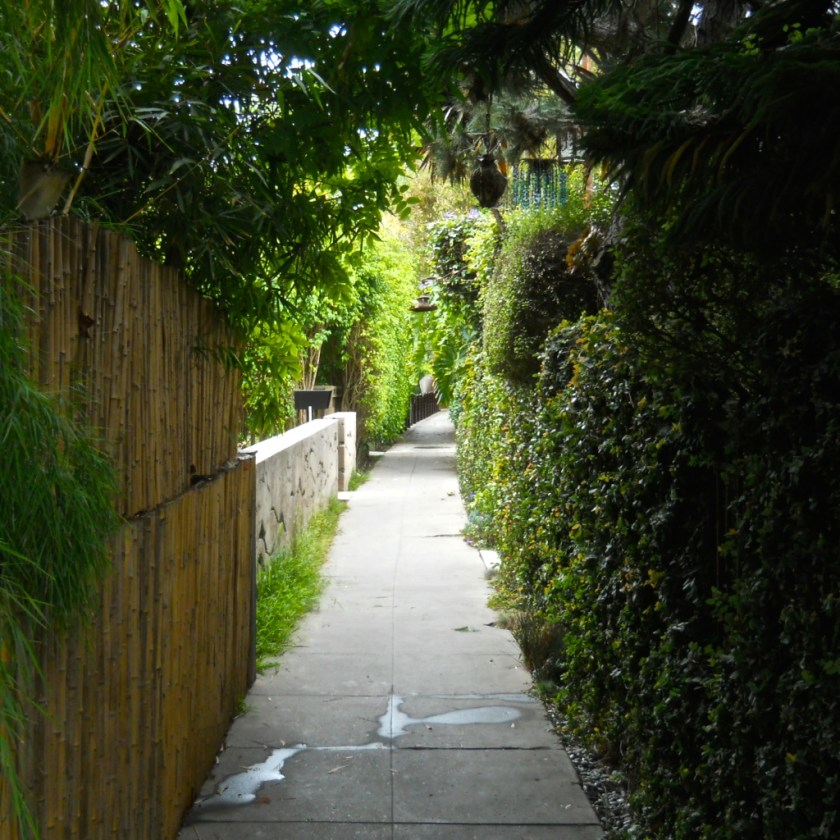 Between the bungalows