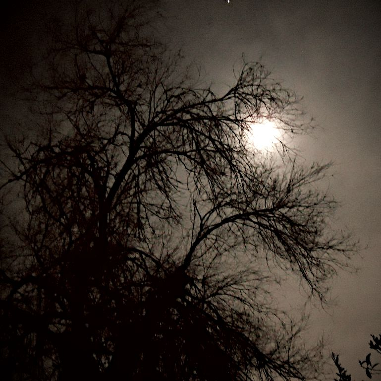 In Van Nuys, $450,000 buys  moonlight