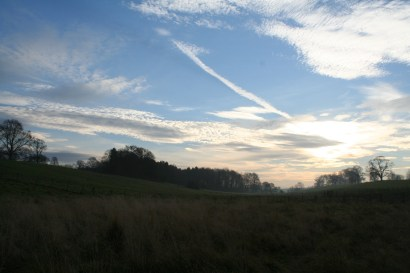 Early morning winter sky in parkland at Acorn Bank
