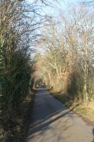 Milburn Road