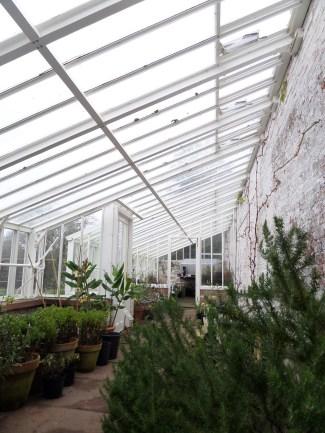 Herb garden greenhouse