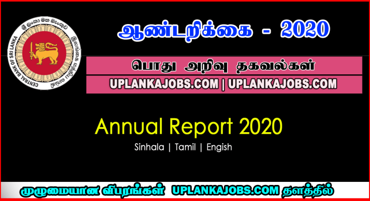 Central Bank Annual Report 2020