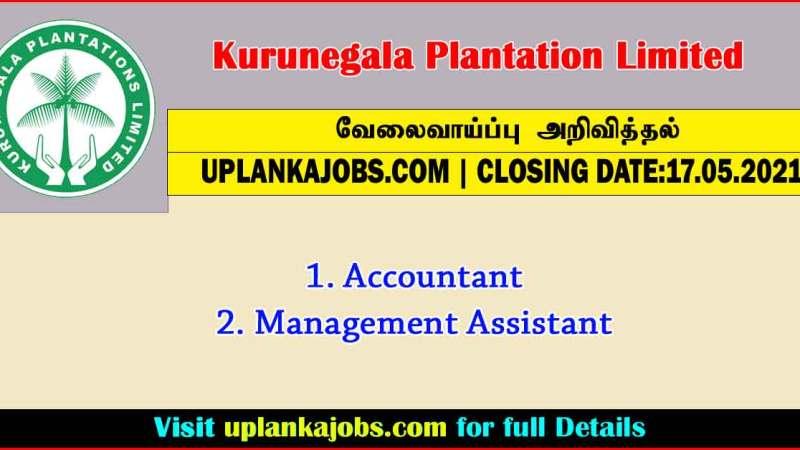Kurunegala Plantation Limited vacancies 2021