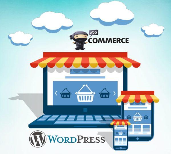 Formation Ecommerce creer un site de vente en ligne sans etre developpeur