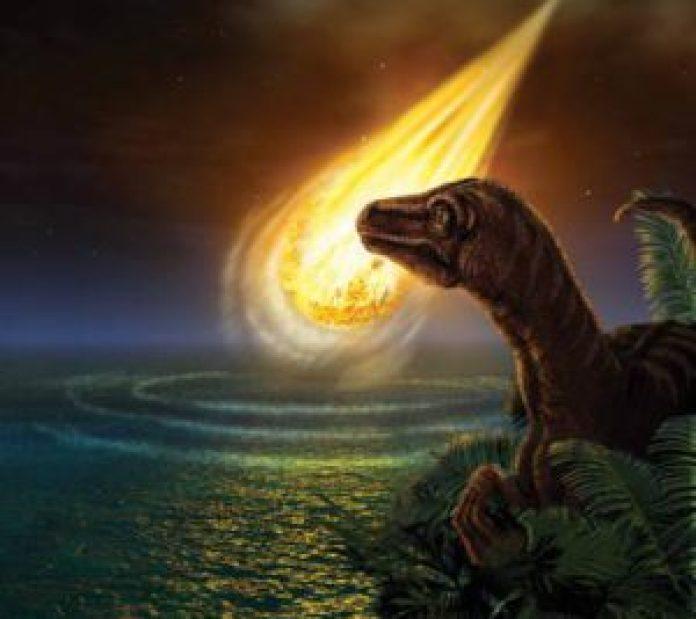 恐龙杀手的母亲(网络)