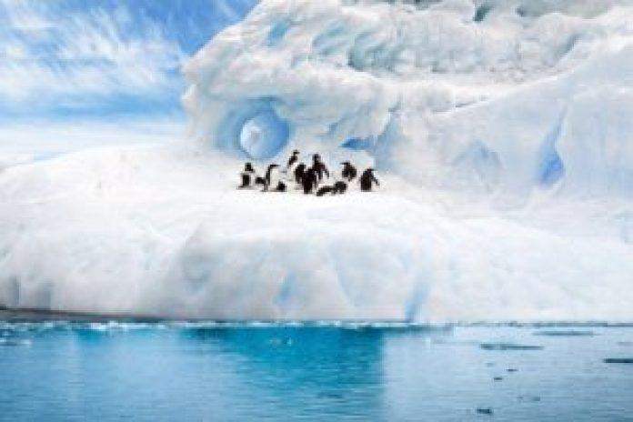 南极洲除了企鹅外基本无人居住(pixabay)