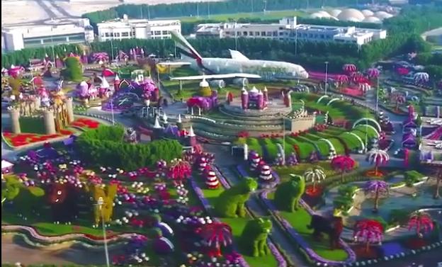 杜拜世界花卉博覽會(視頻截圖)