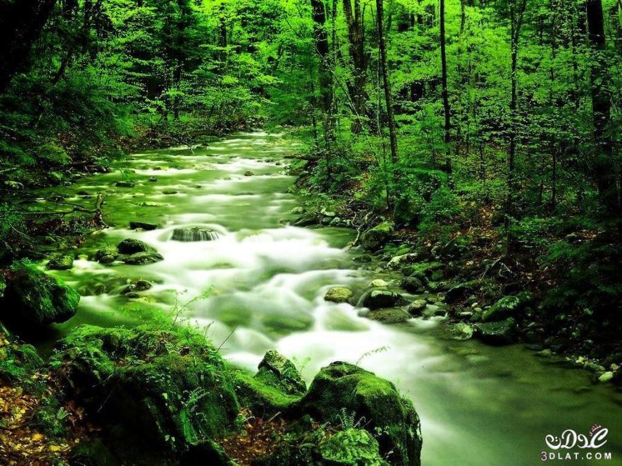 اجمل مناظر طبيعية فى العالم 2020 صور مناظر طبيعيه خضراء2020