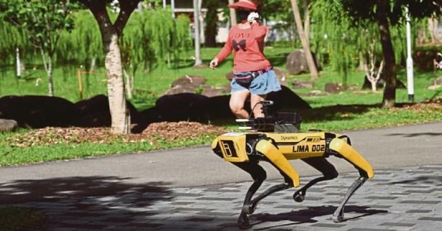 robot anjing