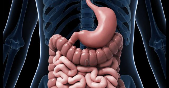 pembedahan bariatrik