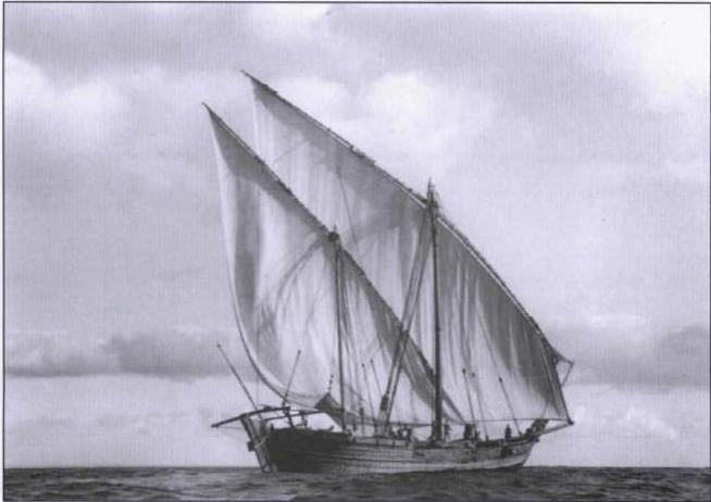 سفينة ويكيبيديا