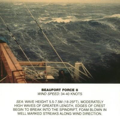 Beaufort scale 8.jpg