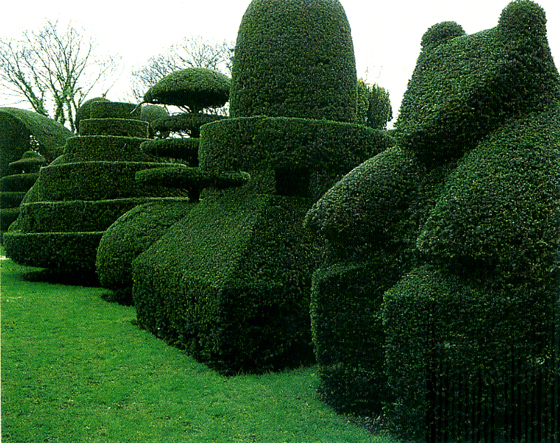https://i0.wp.com/upload.wikimedia.org/wikipedia/commons/0/00/Beckley_Park_topiary_garden.jpg