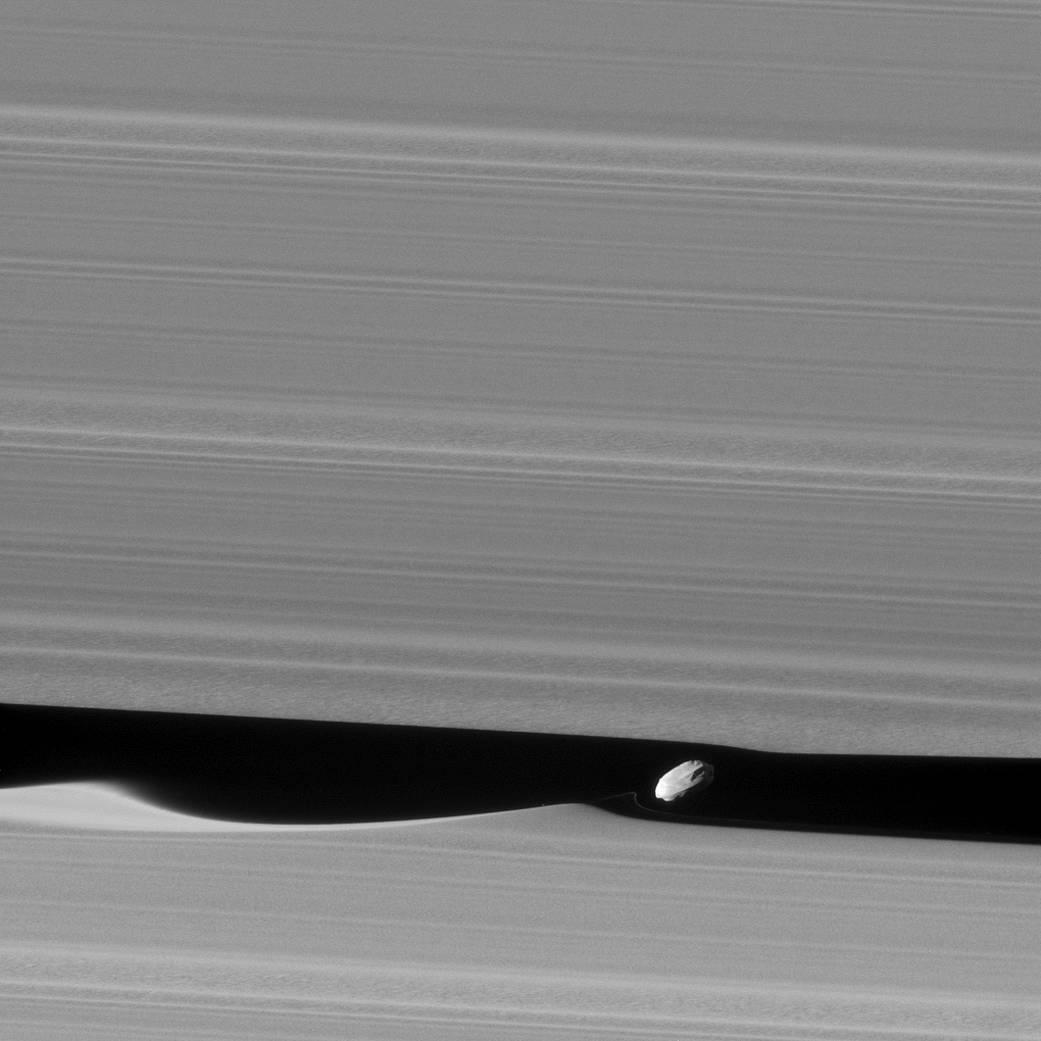 Image de Daphnis obtenue par Cassini, montrant les ondulations qu'il induit aux rebords de la division de Keeler.