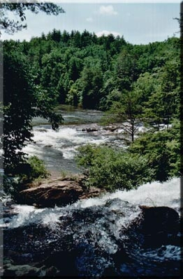 Chattooga River near Dick's Creek Falls