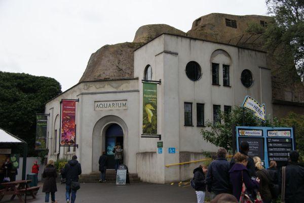 Aquarium London Zoo