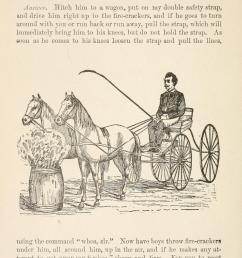 file gleason s horse book page 162 bhl18285154 jpg [ 2351 x 3622 Pixel ]