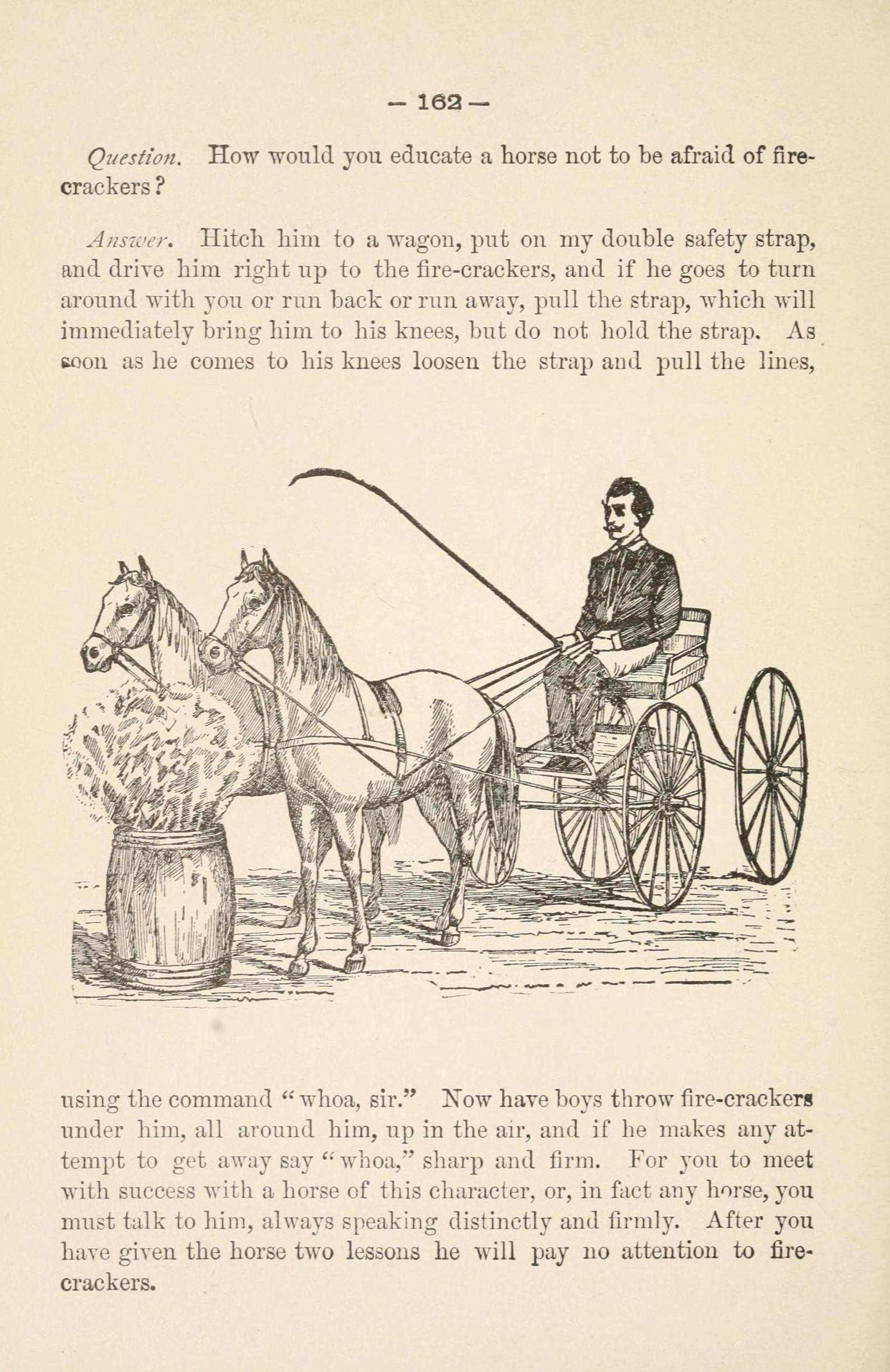 hight resolution of file gleason s horse book page 162 bhl18285154 jpg