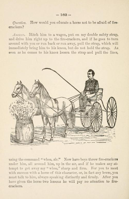 small resolution of file gleason s horse book page 162 bhl18285154 jpg