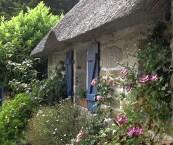 cottage garden florist