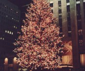 where is the big christmas tree in new york