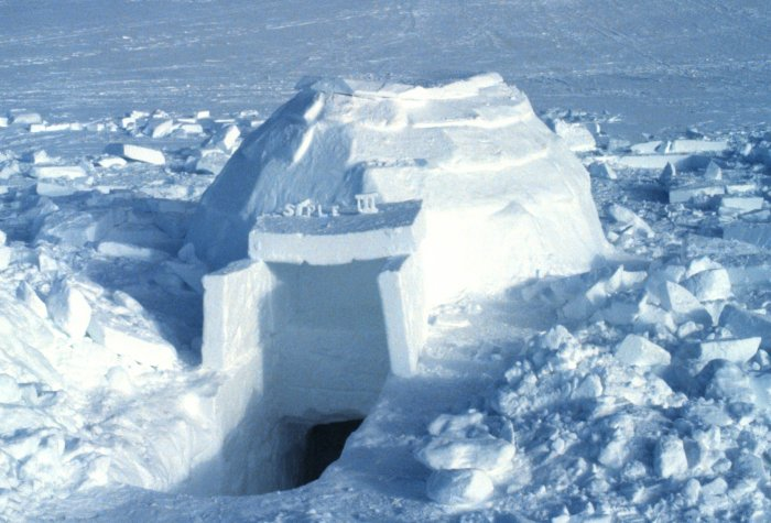 A nearly complete, medium-sized igloo. Note th...