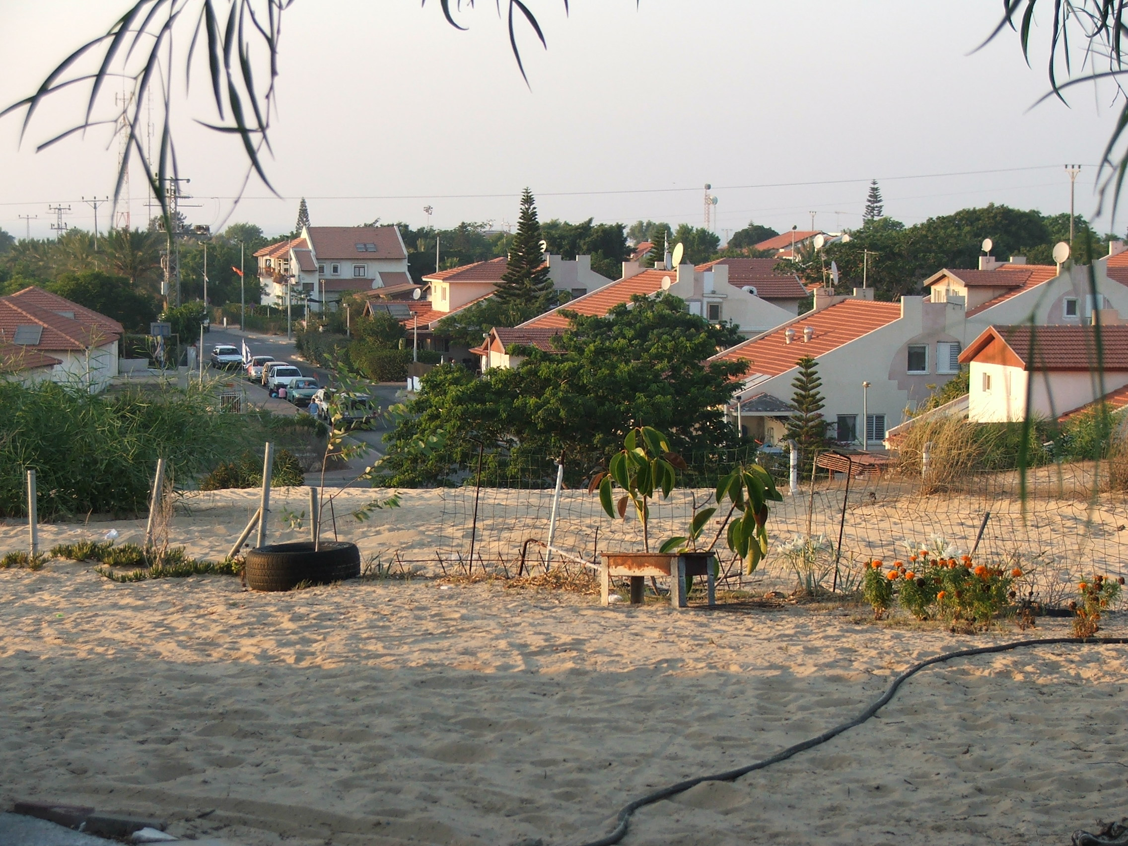 Neveh Dekalim in Gush Katif