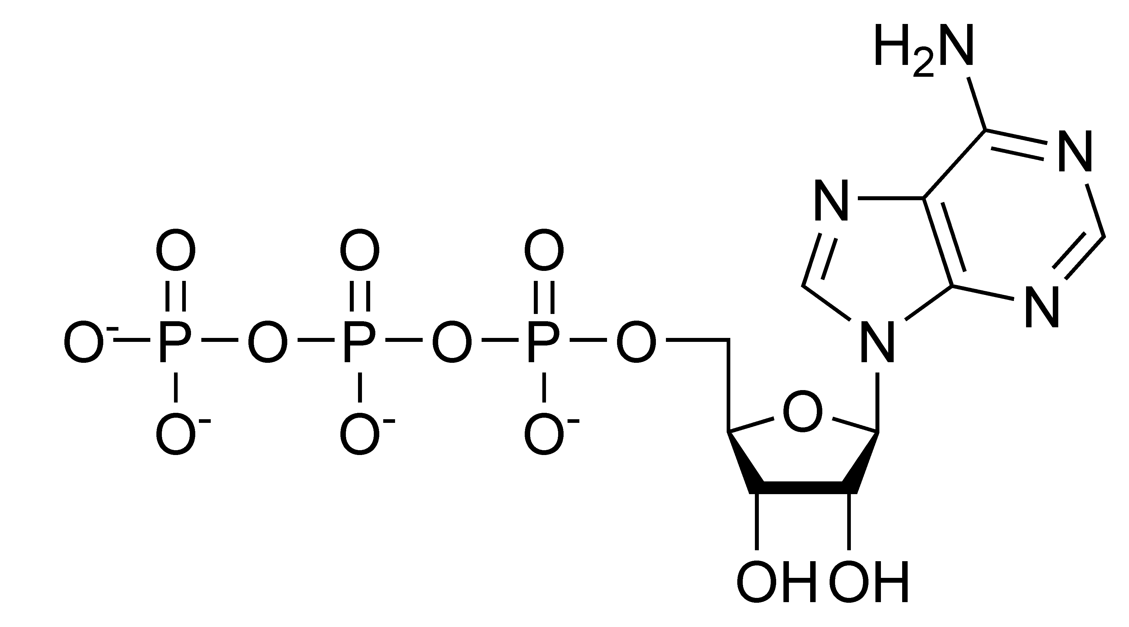 File Atp Chemical Structure