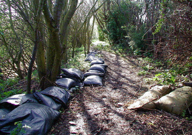 Burstwick Drain, Hedon - geograph.org.uk - 746448