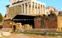 File Tempel Divus Iulius Forum Romanum - Wikimedia