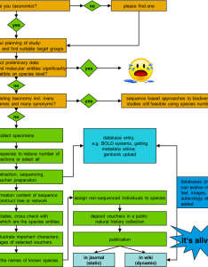 File flow chart of the turbo taxonomy approach also rh commonsmedia