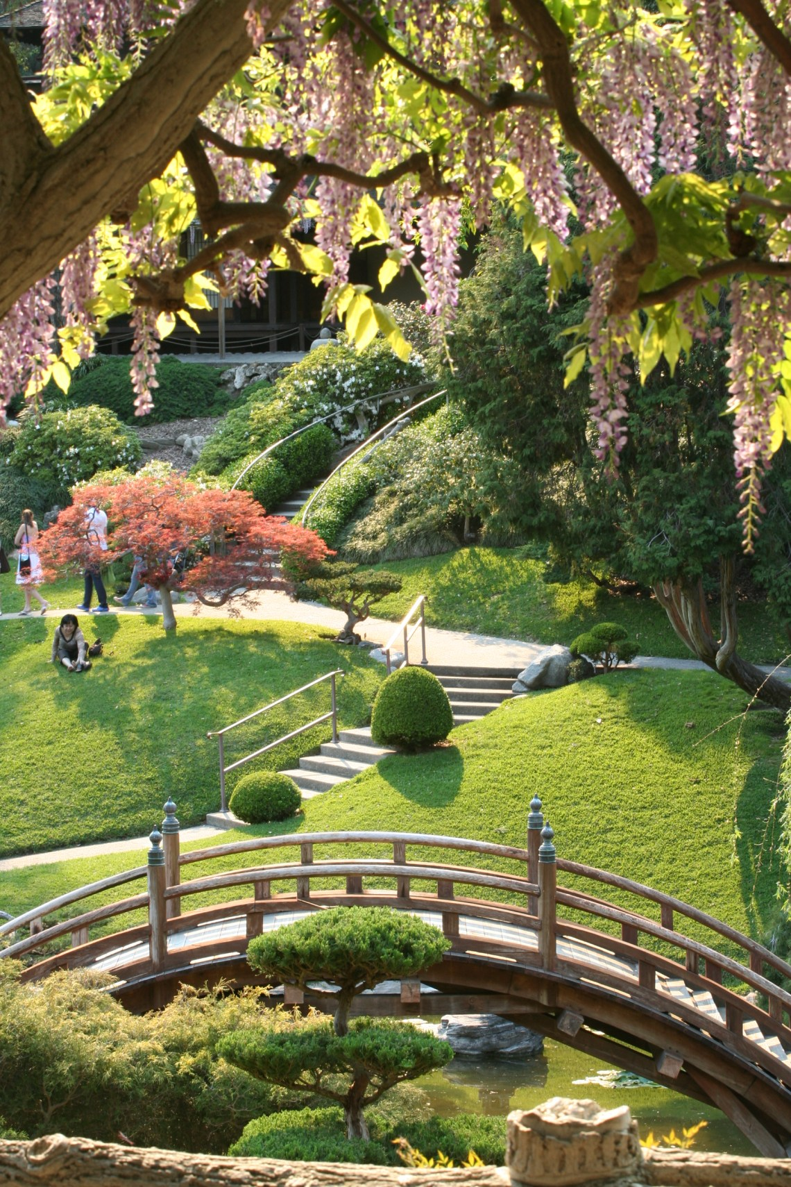 Japanese Outdoor Garden
