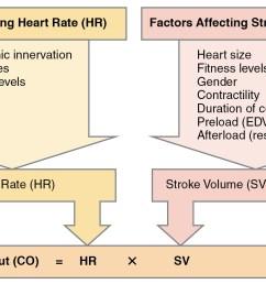 blood pressure diagram of correct posture [ 1508 x 883 Pixel ]