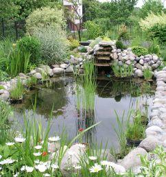 building a koi pond diagram [ 2560 x 1920 Pixel ]