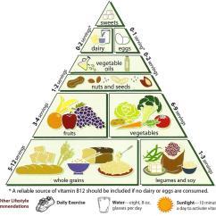 New Food Pyramid Diagram Electronic Wiring Symbols File Loma Linda University Vegetarian Jpg