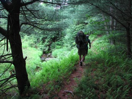 Quehanna Trail System  Wikipedia