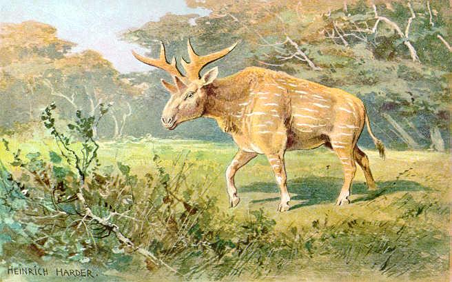 Reconstruction 'une espèce non-identifiée de Sivatherium par Heinrich Harder via Wikimedia