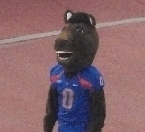 Buster Bronco Boise State Wikipedia