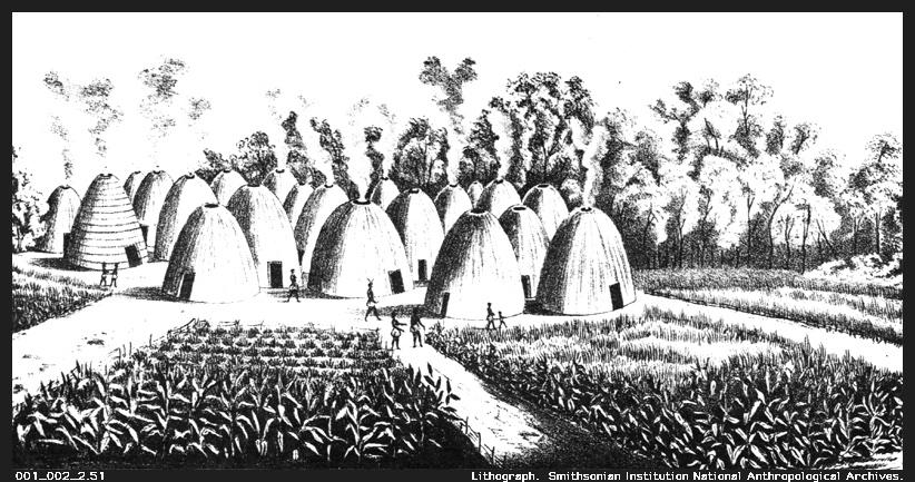 Hunting Buffalo Cheyenne Indians